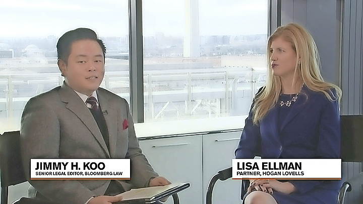 Lisa Ellman Interview